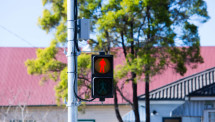 lights and traffic monitoring